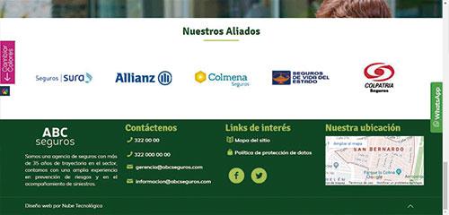 web-profesional1