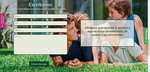 web-profesional2