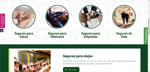 web-profesional3